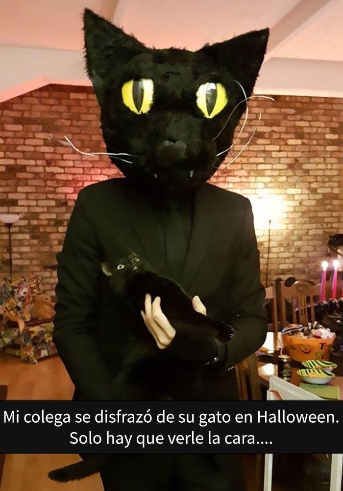 La carcajada del gato online dating