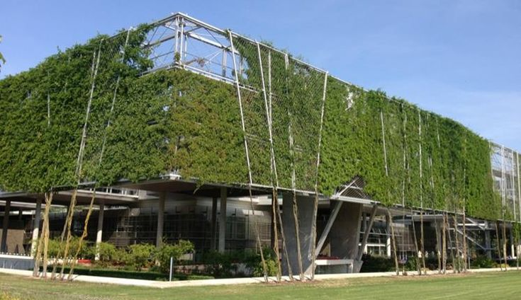 Mais verde, menos consumo de energia – UFRGS Ciência