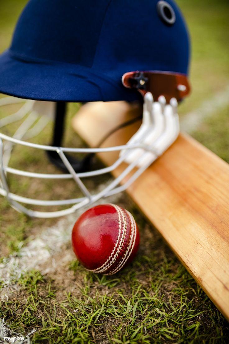 Download premium image of cricket equipments on green