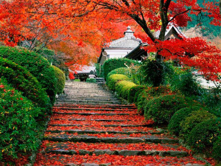 Где провести медовый месяц? Киото, Япония