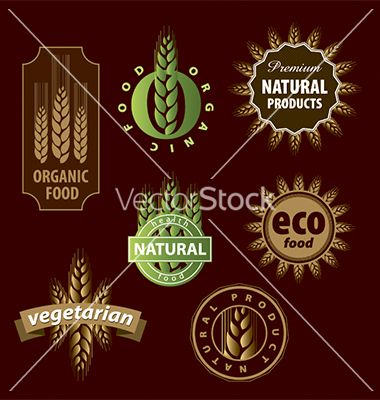 Collection of floral eco sign vector 1267989 - by butenkow on VectorStock®
