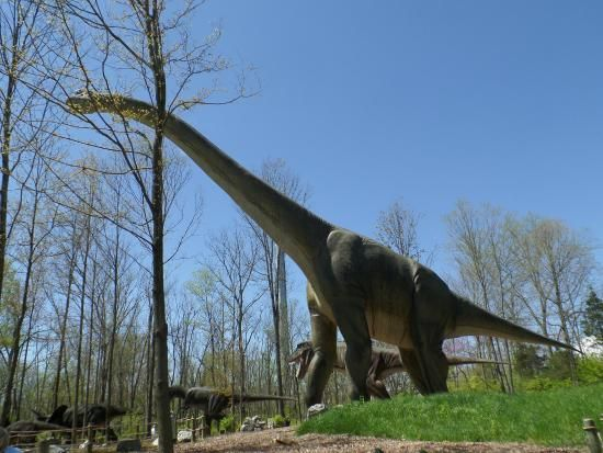 Featuring more than 50 life-sized dinosaurs, this unique park gives you an idea…