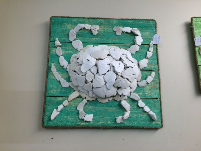 What to do with broken sand dollars   Shell Cornucopia ...