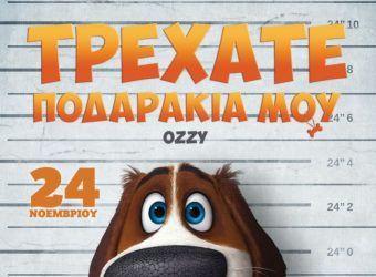 «Τρεχάτε Ποδαράκια Μου» από 24/11 στους κινηματογράφους | Infokids.gr