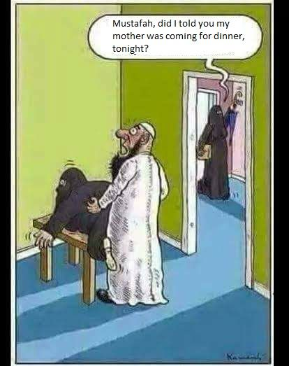 The 3rd best cartoon about Islam