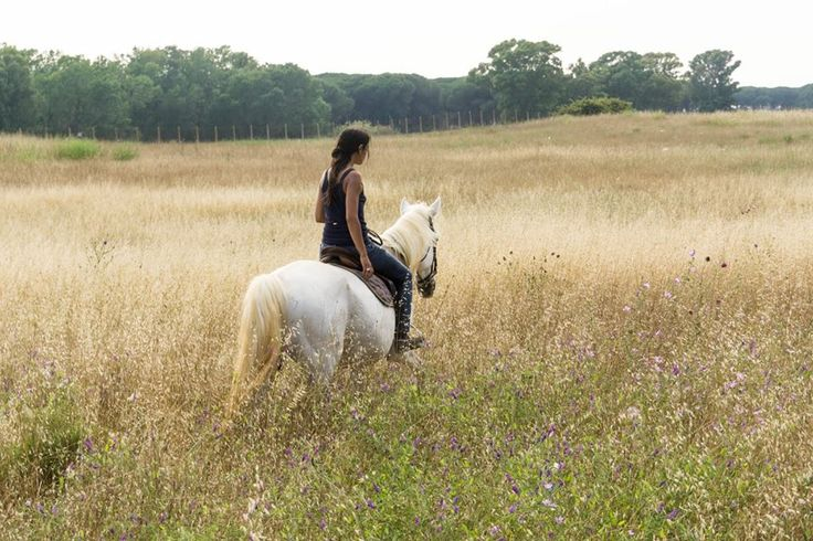 Ancient Ostia Trail  Experience Ranch #vacations in #Italy for #Horse & #Rider,  with pony trekking & riding trails in beautifull Parks  #booking online on http://www.equestrianitaly.com