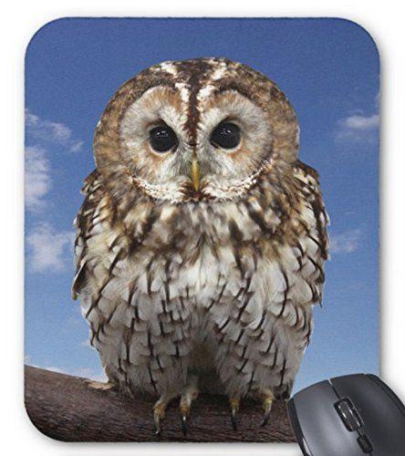 モリフクロウのマウスパッド:フォトパッド( 世界の野生動物シリーズ ) 熱帯スタジオ http://www.amazon.co.jp/dp/B013ND0EGA/ref=cm_sw_r_pi_dp_lKYXvb19SA33V