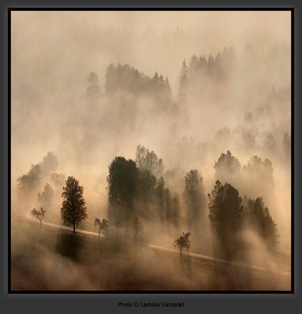 Jalislav Kamarád: Mlhavé ráno – Národní park České Švýcarsko