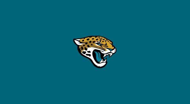 Jacksonville Jaguars 8' Pool Table Cloth