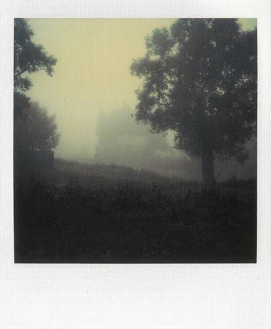 Myasnoye, September 26, 1981_IV    Instant Light: Tarkovsky Polaroids    Edited by Giovanni Chiaramonte & Andrei Tarkovsky  Introduction by Tonino Guerra    Thames & Hudson  2004  ISBN: 0 500 28614 0    www.worldcat.org/oclc/62796344