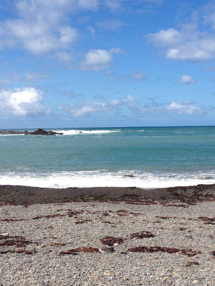 Beautiful Owhiro Bay