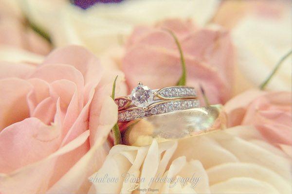 Shalene Dawn Photography | Wedding Rings Roses