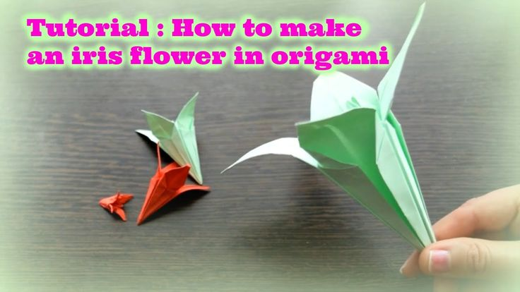 Tutorial : How to make an iris flower in origami 🎍🎋🌸