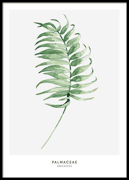 En affisch med grönt palmblad.