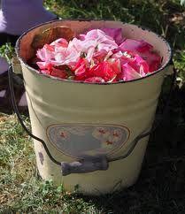 bucket of rose petals