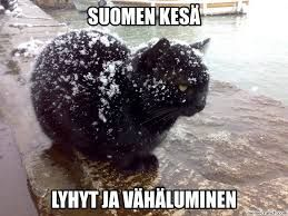 suomi memes - Google-haku