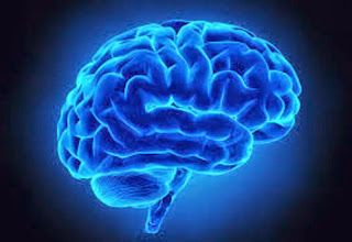 What is Alzheimer's Disease? What are the Eight Types of Dementia?  Alzheimer's Reading Room