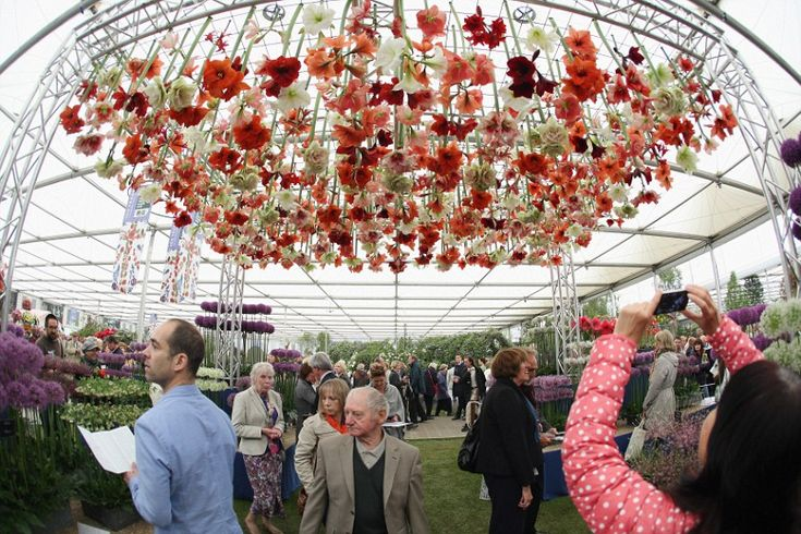 Prince Harry's garden, a gnome invasion and Joanna Lumley: the highlights of this year's Chelsea Flower Show.