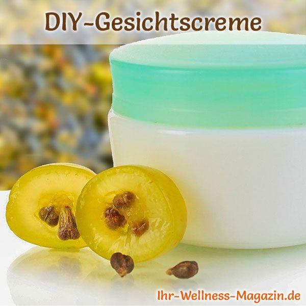 Gesichtscreme selber machen: So können Sie eine Creme mit Traubenkernöl selber machen, probieren Sie das folgende Rezept mit Anleitung ...