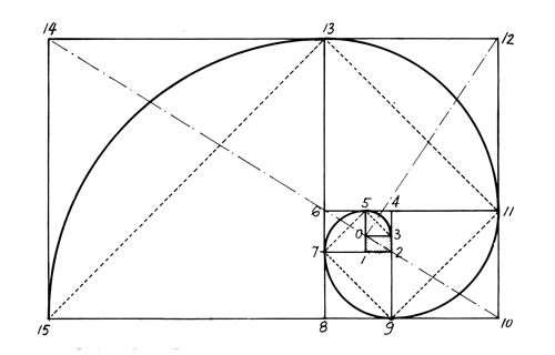 25  best ideas about golden ratio examples on pinterest