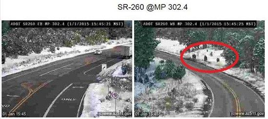 """Family of Sasquatches"" Traffic Camera Photo by ADOT Causes Buzz in Bigfoot World"