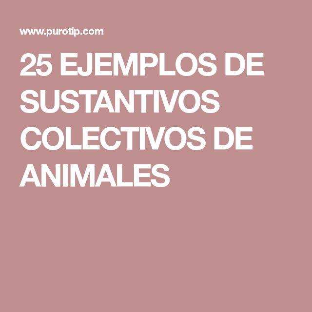 25 EJEMPLOS DE SUSTANTIVOS COLECTIVOS DE ANIMALES