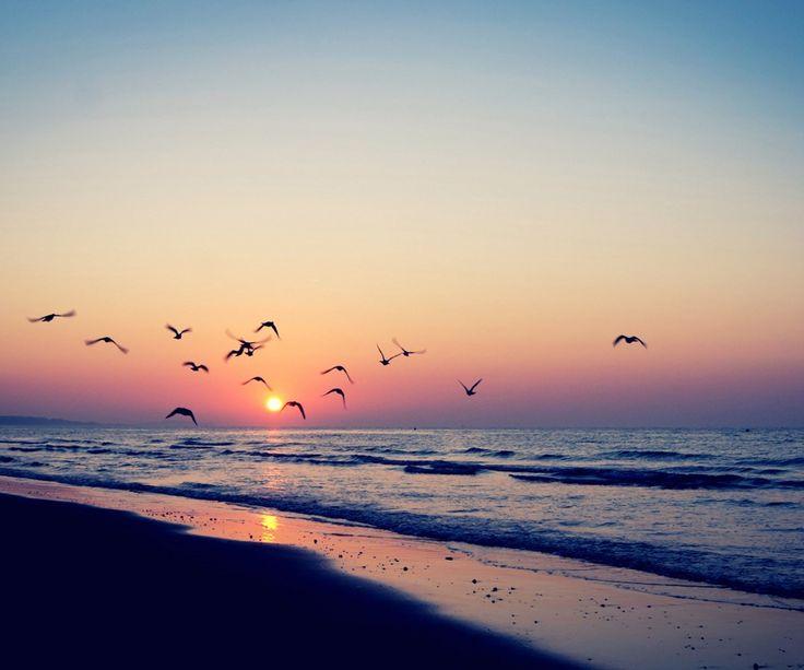 #sunset #ocean