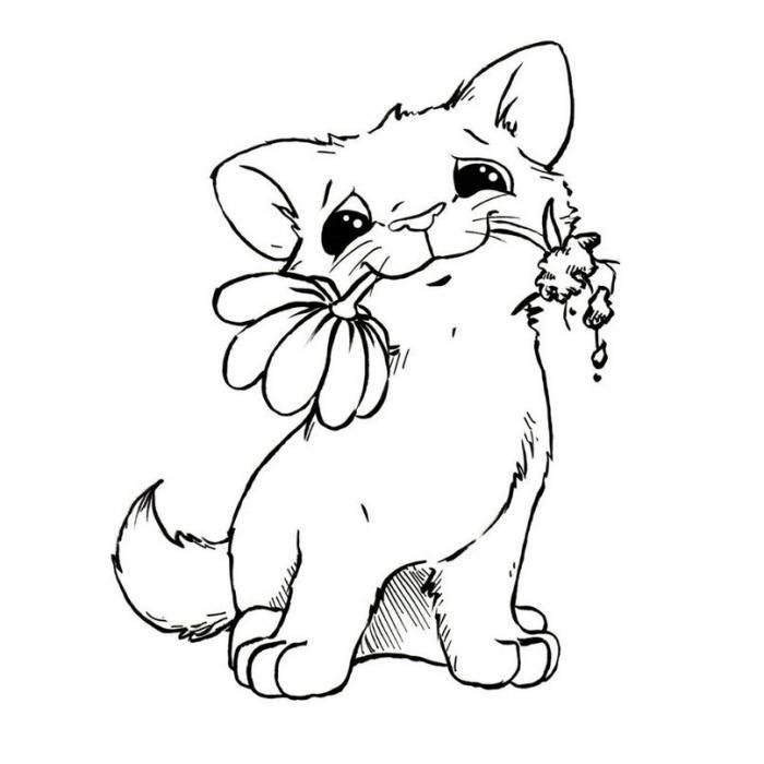 глянцевые открытка с кошкой распечатать звезды для публикации