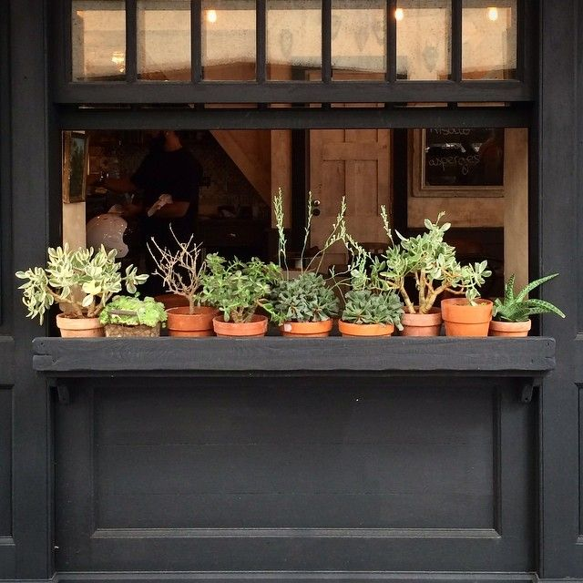 best 25 black planters ideas on pinterest large leaf plants outdoor pots and planters and. Black Bedroom Furniture Sets. Home Design Ideas