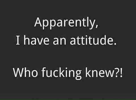 Apparently, I have an attitude. Who fucking knew?!