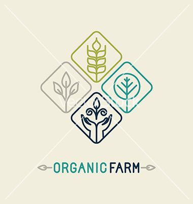 Agriculture and organic farm line logo vector- by venimo on VectorStock®