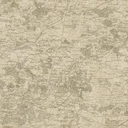 55 best wallpaper images on pinterest spoonflower custom fabric wallpaper old world vintage french map kahki on beige gumiabroncs Images