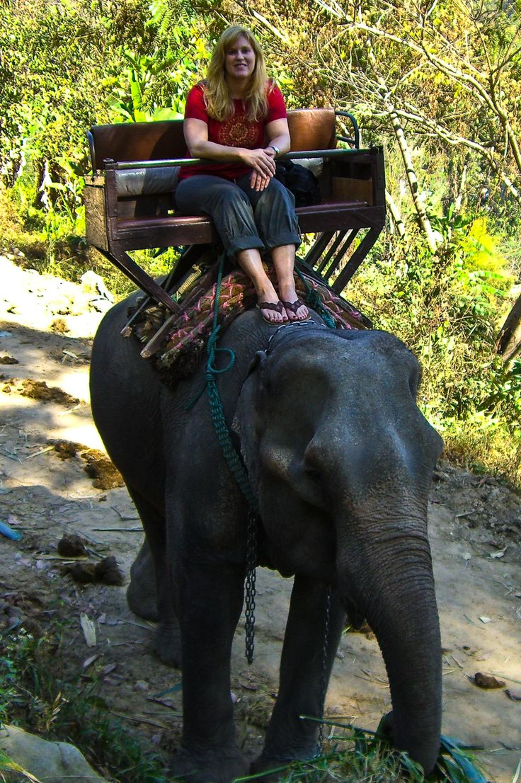 Chiang Mai, Thailand - My first (and only) elephant ride!