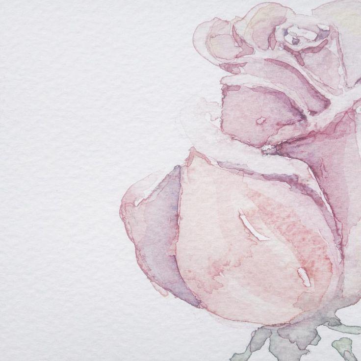 Instagram @kimartinsartist  || Number 9 || 15cmx19,5cm watercolor ink in watercolor paper with 300g/m2 #watercolor #painting #art #flower #roses #decoration #wall #kimartinsartist #color