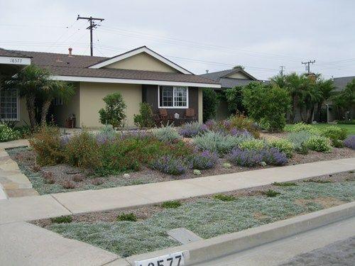 189 Best Desert Landscaping Images On Pinterest Landscaping Ideas Front Yard Landscaping And Front Yards