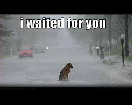I waited for you . . .
