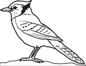 printable coloring pages of blue jays | 44 best Kyle's Animal Board images on Pinterest | Birthday ...
