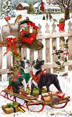 Boston Terrier Christmas Delivery--made me think of friends that have Boston terriers.