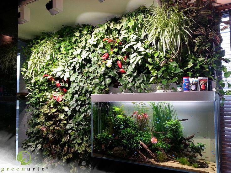 Wertykalny ogród w towarzystwie akwarium Greenarte - październik 2014