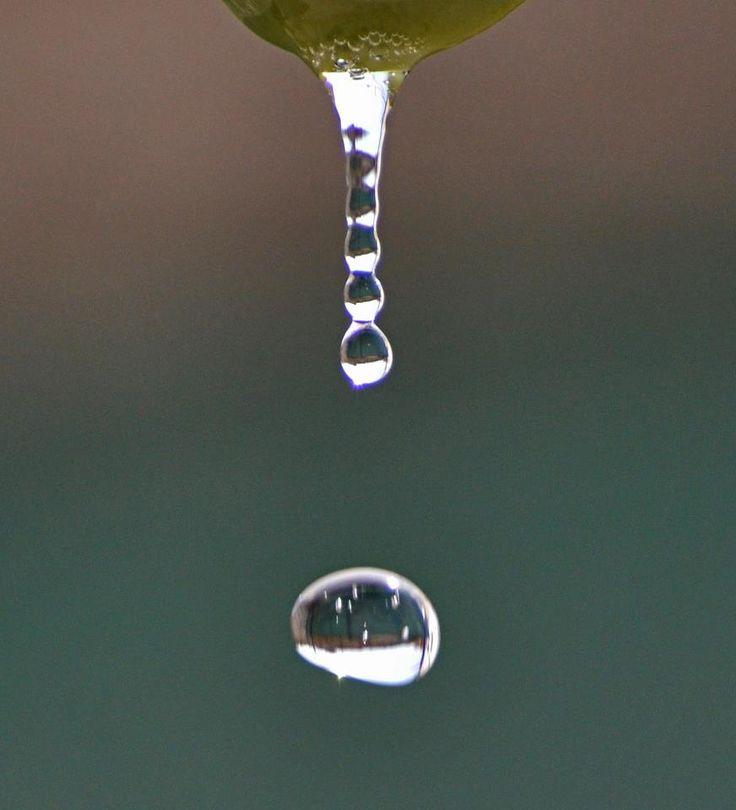 Realizzare foto che congelino la caduta o il riflesso di una goccia d' acqua è una fotografia che almeno una volta un fotografo prova a fare.