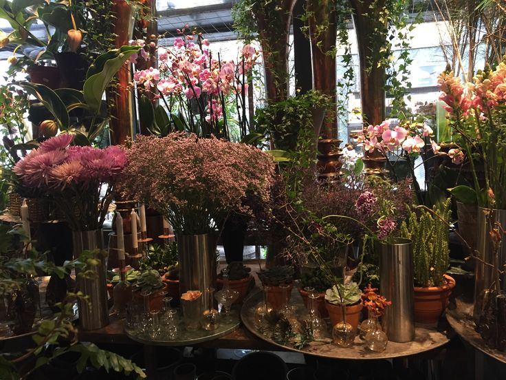 På tur i blomsterbutikker i Oslo - insiprasjon
