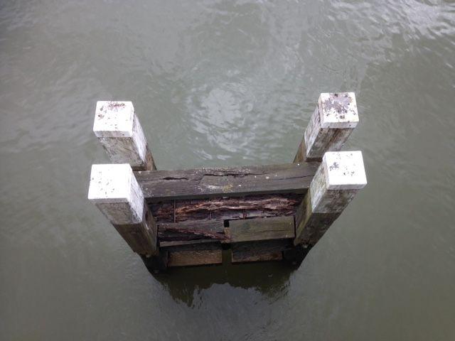 Vanaf de Willemsbrug in Rotterdam
