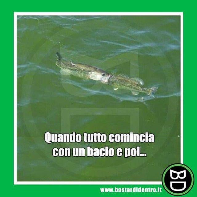 Tutto comincia da qui... #bastardidentro #bacio #pesci www.bastardidentro.it