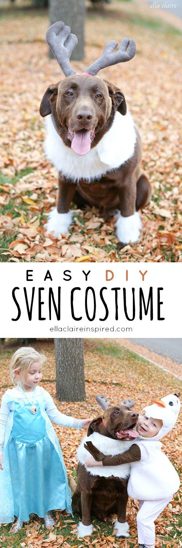 Easy DIY Sven Costume for a Dog