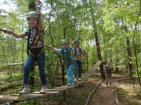 One of our eco forest and children climbing Low Ropes Courses in it.