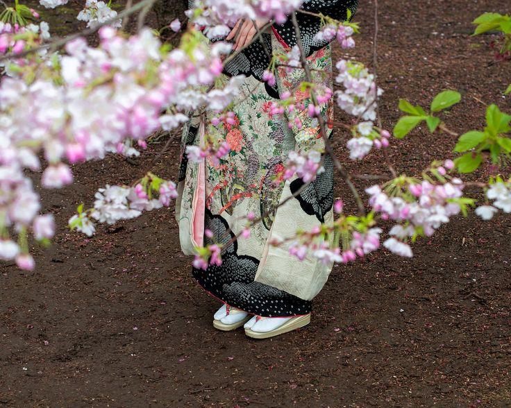 Picture of a person in Shinjuku Gyoen National Garden in Tokyo, Japan