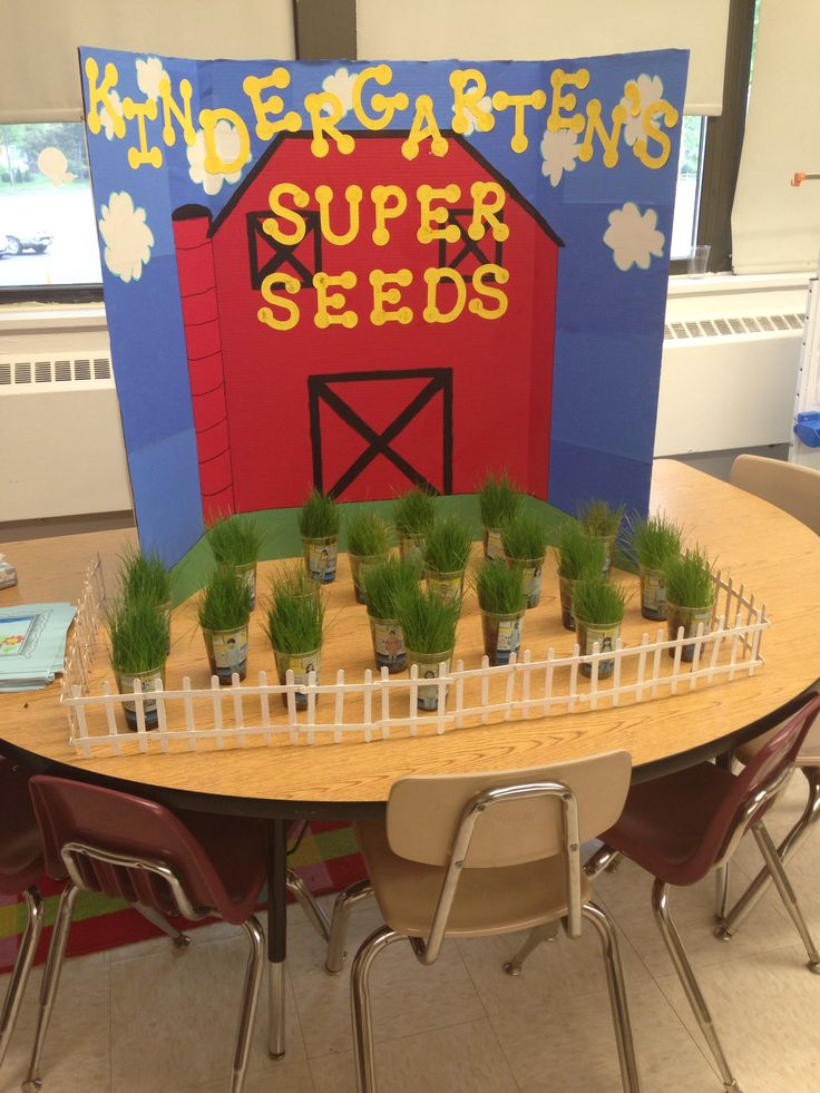 2c38b7e82563dd461aa31202e30da692  science fair projects kindergarten class - Kindergarten Science Fair Project