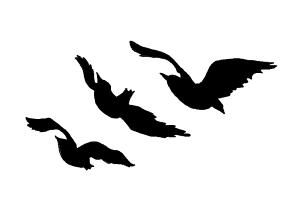 how-to-draw-tris-prior-raven-tattoo-from-divergent.jpg