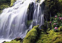 2016 Travel Bucketlist: The Philippines