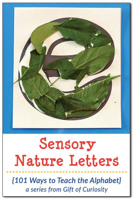 Make sensory nature letters using natural elements to help children learn their letters. What a great way to teach the alphabet!    Gift of Curiosity